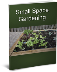 Small Space Gardening Cover